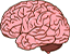 mozgi.png